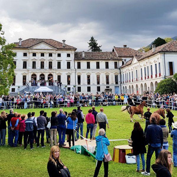 villa-di-modolo_title_eventi